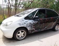 毕加索 车体中国风彩绘