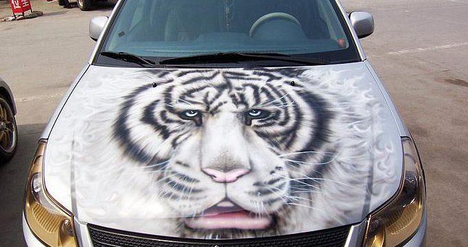 汽车机盖——猛于虎也