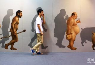 人类的演变过程